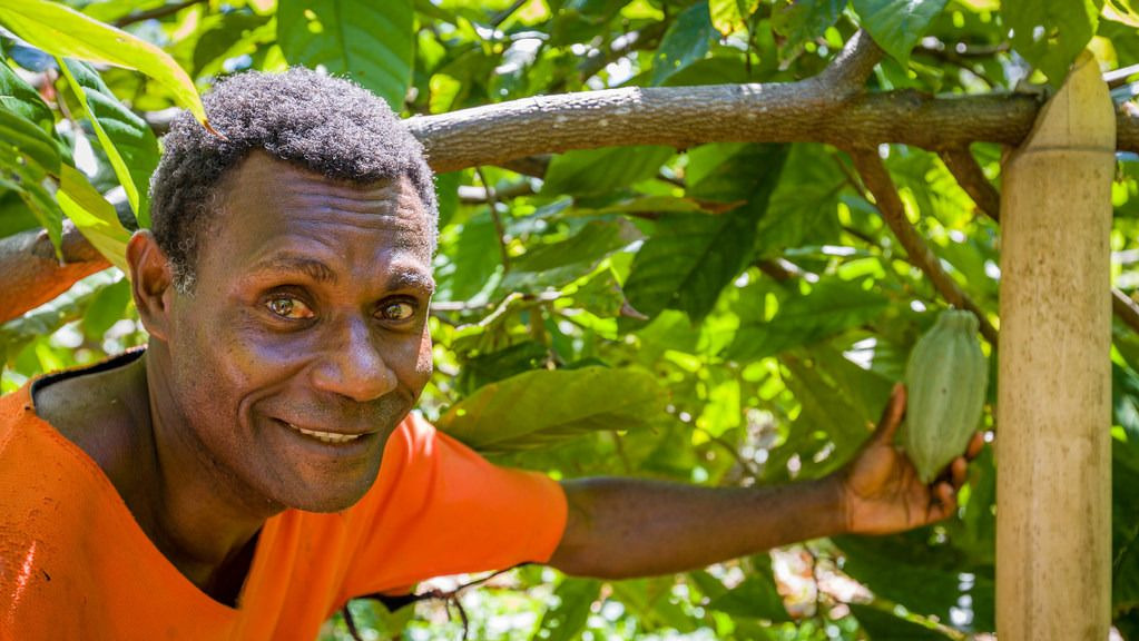 Vanuatu farmer shortlisted for International Cocoa Awards already a winner