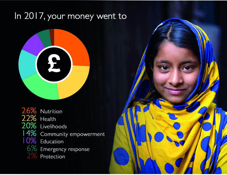 Annual report 2017 - how money was spent