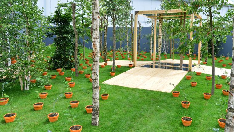 Ten Million Trees World Vision Uk At Bbc Gardeners World Live