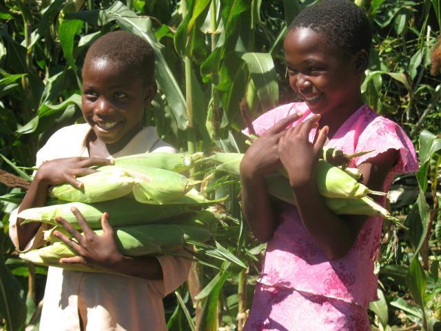Zimbabwe_hero-_Hurungwe_31.JPG
