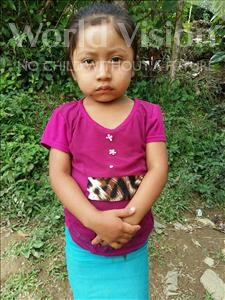 Choose a child to sponsor, like this little girl from Maya, Delcy Esperanza age 3