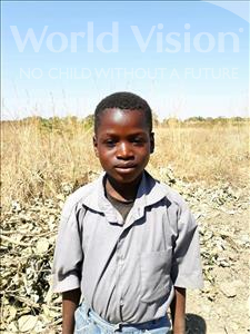 Choose a child to sponsor, like this little boy from Keembe, Shadreck age 8